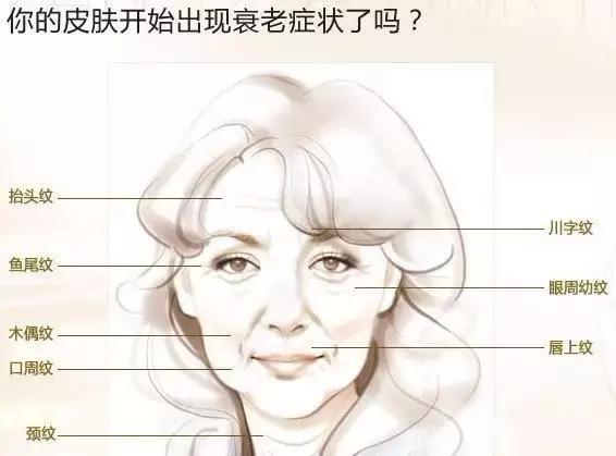 面部线雕用的是什么材质的线图片